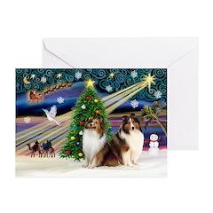 XmasMagic/2 Shelties-S Greeting Cards (Pk of 20)