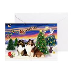 Xmas Tree/Two Shelties Greeting Card