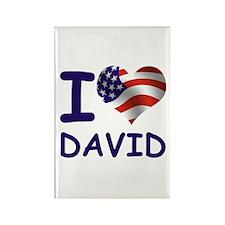 I LOVE DAVID (USA) Rectangle Magnet (10 pack)