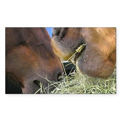 Two Brown Horses Chow Down Rectangle Decal