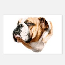 Bulldog Bust Postcards (Package of 8)