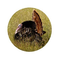 Big Tom Turkey 3.5