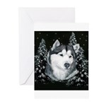 Alaskan Malamute with Snow Greeting Cards (Pk of 2