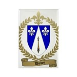 DUBEY Family Crest Rectangle Magnet (100 pack)