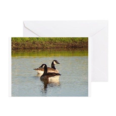 Wildlife Greeting Cards (Pk of 10)