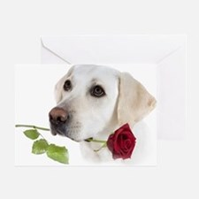 White Lab Holds Rose Greeting Card