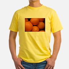 50 Jersey Year Dog T-Shirt