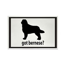 Got Bernese? Rectangle Magnet