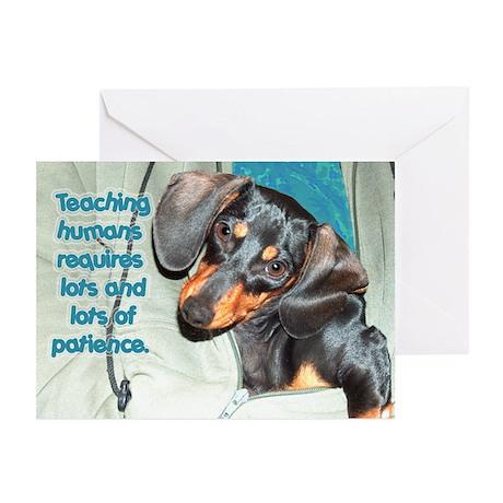 Teaching Humans Dachshund Dogs Greeting Cards (Pk