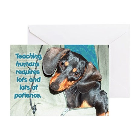 Teaching Humans Dachshund Dogs Greeting Cards (Pk