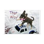 Chihuahua Trucker Mini Poster Print