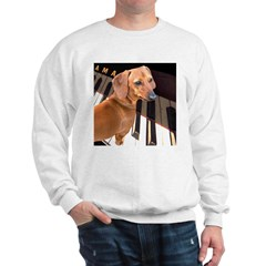 Genius Dachshund Dog Sweatshirt