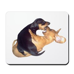 Yin Yang Color Dachshunds Mousepad