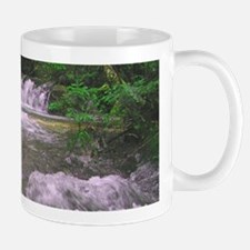 Waterfall Mug - Beautiful Mattole River