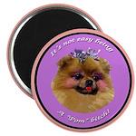 Pomeranian Bitch! Magnet