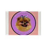 Pomeranian Bitch! Rectangle Magnet (100 pack)