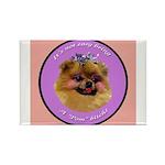 Pomeranian Bitch! Rectangle Magnet (10 pack)