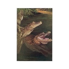 Crocodile Fridge Magnet, Rectangle