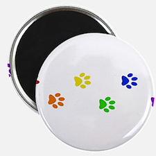 Rainbow paw prints Magnet