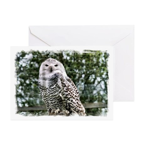 ...Snowy Owl 2... Greeting Cards (Pk of 10)