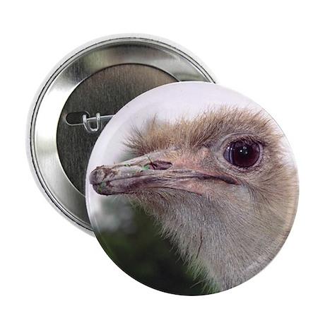 Ostrich Eye Button
