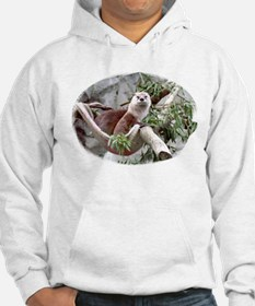 Otter Looking Out Hoodie