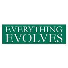 Everything Evolves Bumper Bumper Sticker