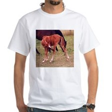 Scratching the Itch! Shirt