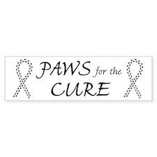 Black Paws4Cure Bumper Bumper Sticker