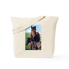 Indigo and Rainier Tote Bag