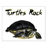 Turtles Rock Small Poster