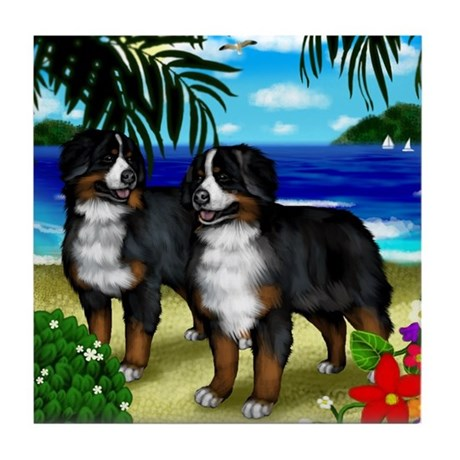 BERNESE MOUNTAIN DOGS BEACH Tile Coaster
