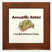 Armadillo Addict Framed Tile