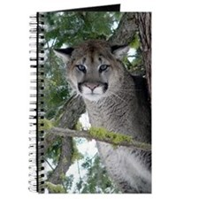 Cougar Journal