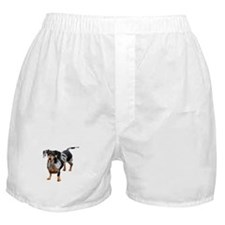 Spotted Doxie Boxer Shorts