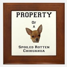 Funny Chihuahuas Framed Tile