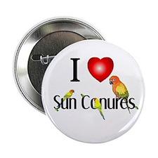 "Unique Sun conure 2.25"" Button (10 pack)"