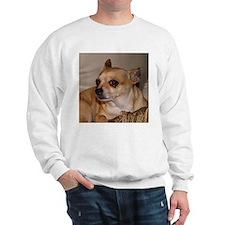 Chihuahua Sweatshirt