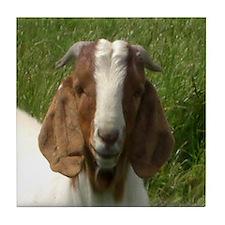 Goats Tile Coaster