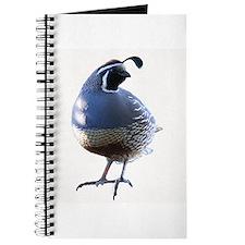 Evening Quail Journal