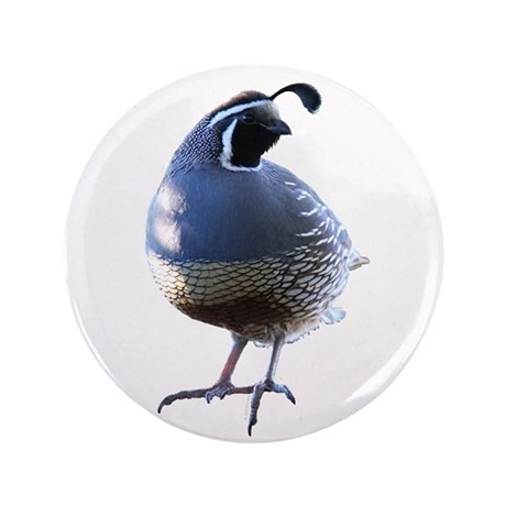 "Evening Quail 3.5"" Button (100 pack)"