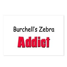 Burchell's Zebra Addict Postcards (Package of 8)
