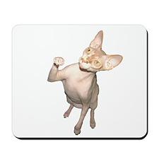 Hairless Cat Mousepad