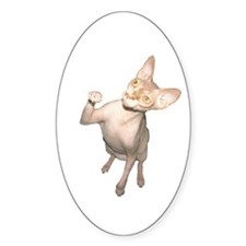 Hairless Cat Oval Decal
