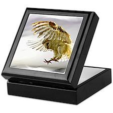 Animal egg Keepsake Box