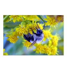 Bee & Yellow Dandelions Postcards (Package of 8)