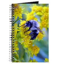 Bee & Yellow Dandelions Journal