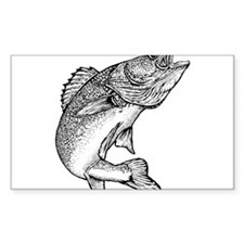 Walleye Rectangle Decal