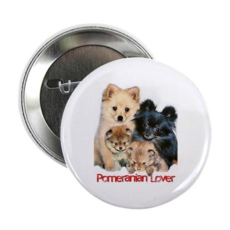 Pomeranian Button