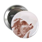 """New Orleans cemetery 2.25"""" Button (10 pack)"""